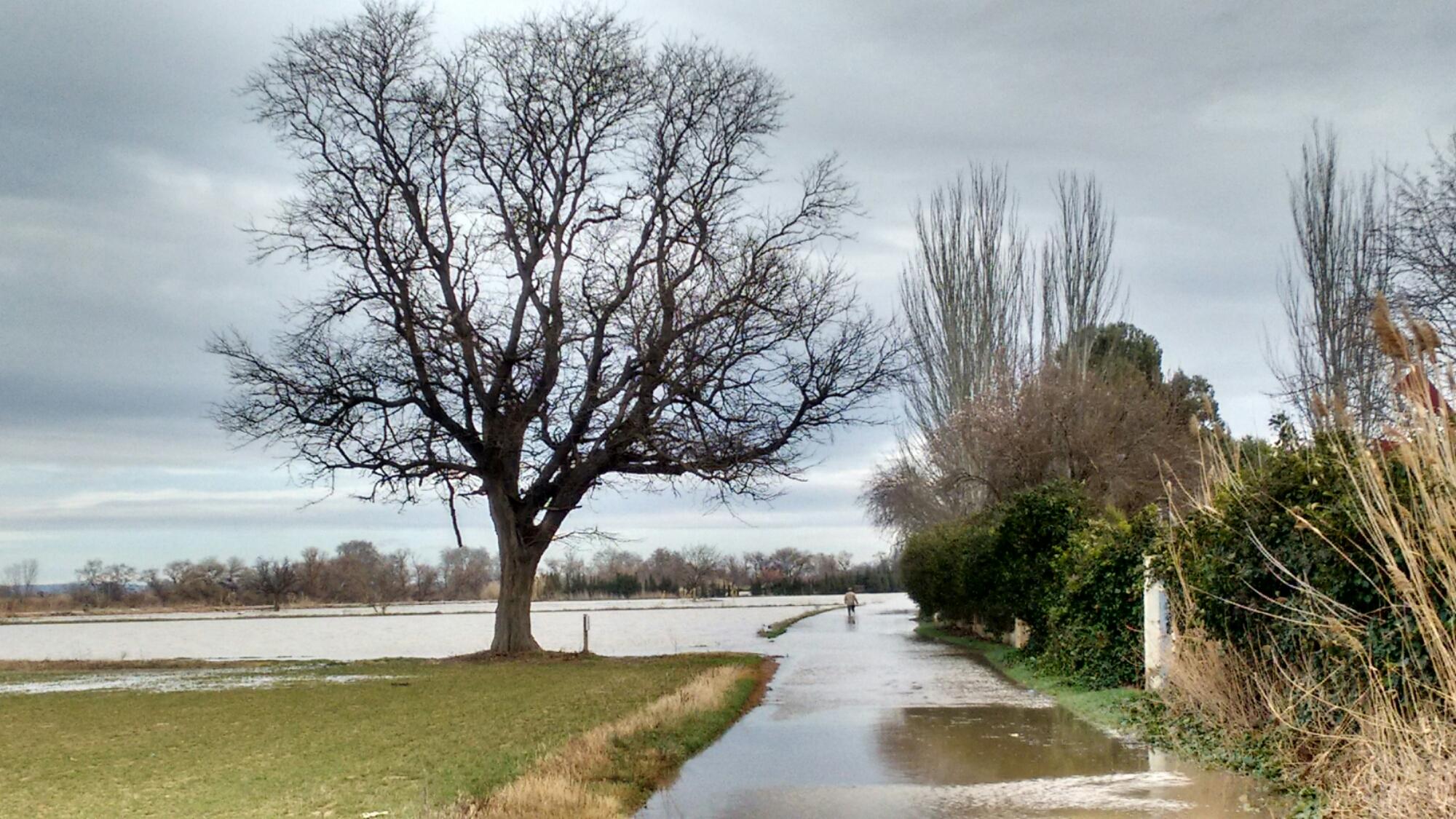 Camino de Zaragoza a Monzalbarba 28 Feb 2015